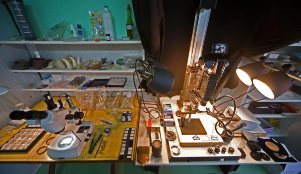 l'ensemble du labo